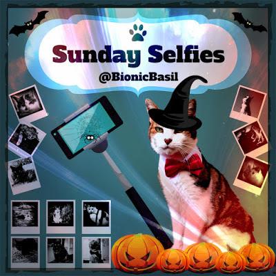 Sunday Selfies Halloween Banner ©BionicBasil®