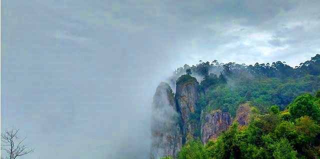 Kodaikanal the Gift of the forest in South Asia- Travel Guide
