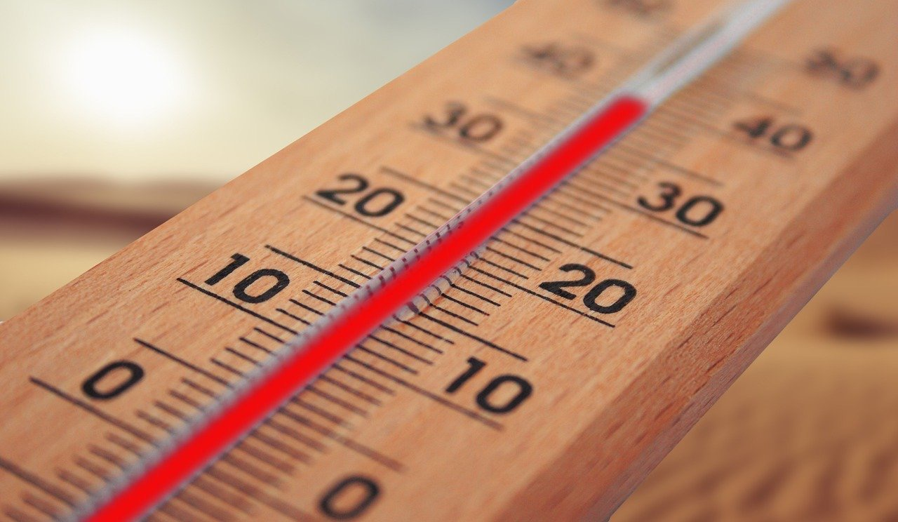 Regulation of temperature of testes