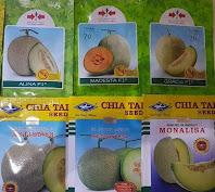kalori melon, manfaat melon, cara menanam melon, jual benih melon, toko pertanian, toko online, lmga agro
