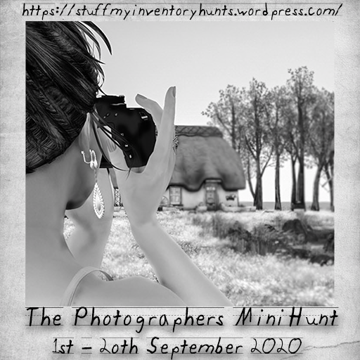 The Photographers Mini Hunt