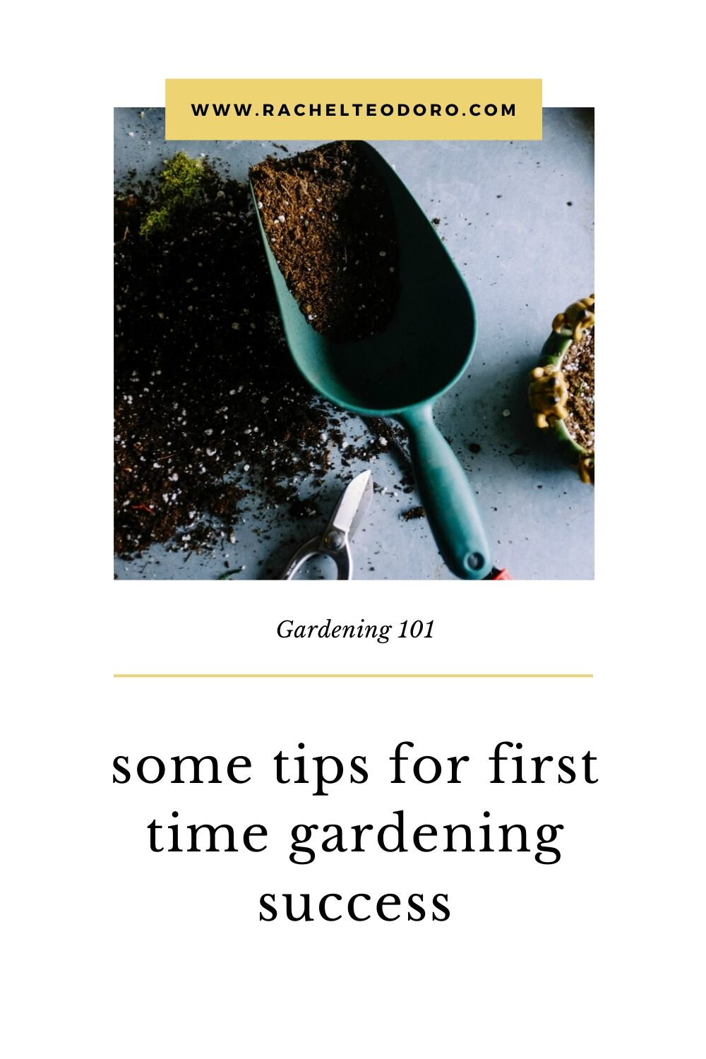 Gardening Ideas for When you are Stuck at Home
