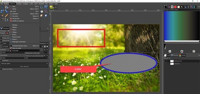 come aggiungere forme a immagini con gimp