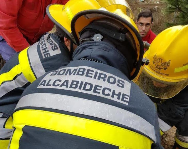 Bombeiros de Alcabideche resgataram com sucesso cão que tinha caído a poço