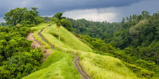 All About Bali The Hill of Campuhan Love Ubud