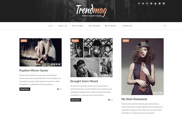 Trendmag Responsive Magazine Personal Blog Fashions Lifestyle Blogger Template Theme