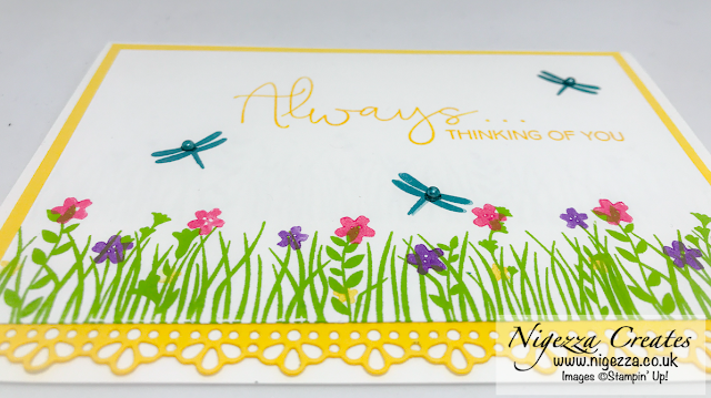 Nigezza Creates with Stampin' Up! and Field Of Flowers & Ornate Borders