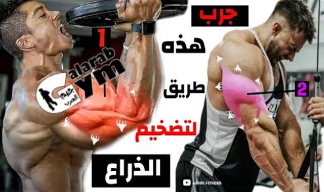 أول جدول تدريبي لعضلة الذراع كاملة يجب عليك القيام به ( Arm Day )