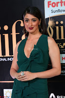 Laxmi Rai in a Deep neck Beautiful Green Gown Cute Actress Laxmi Rai ~  060.JPG