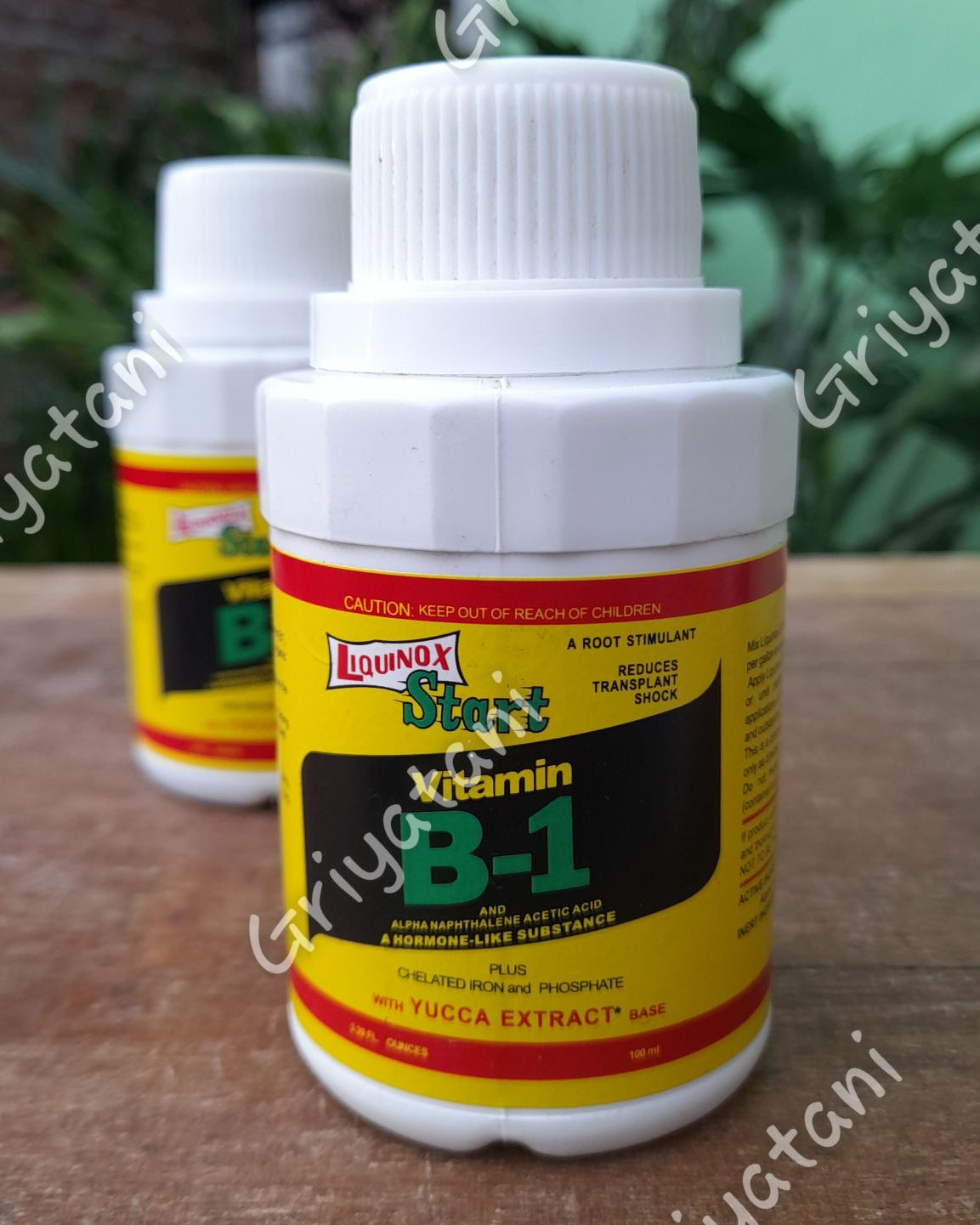 Vitamin b1 lquinox 100