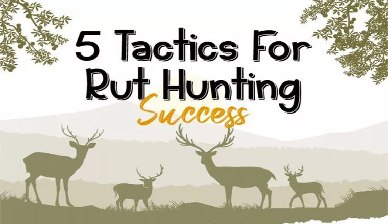 5 Tactics For Rut Hunting Success #infographic
