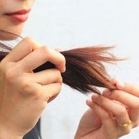 الشعر التالف: أي رعاية تختار ضد الشعر التالف