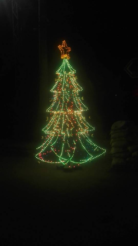 college christmas tree lights up lahore