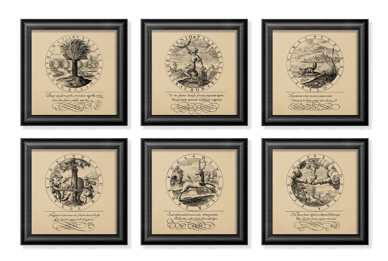 Details about vintage style prints set of 6 rustic wall art decor old book pages illustration