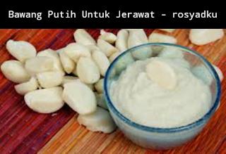 bawang putih untuk jerawat