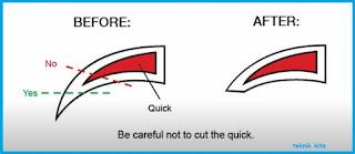 Cara pemotongan pada Kuku Kucing