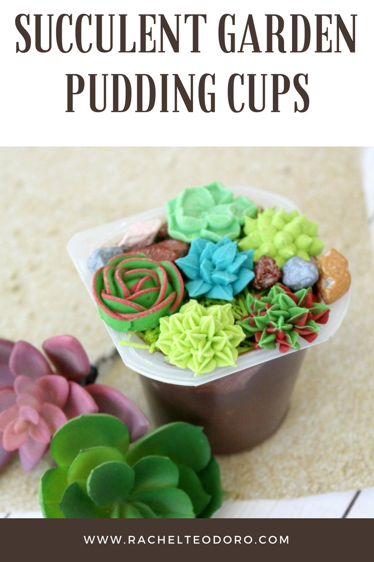 hens and chicks and cactus candy in a dirt pudding cup