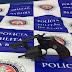 Polícia Militar retira mais uma arma de circulação em Ponto Novo