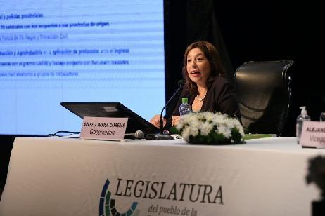 Se elevará proyecto para readecuar Ley de Protección de los Derechos de Niños, Niñas y Adolescentes