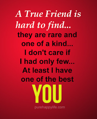 true-friend-is-hard-to-find-they-are-rare-and-one-of-a-kind