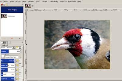 gimp brush watermark copyright size colour transparency