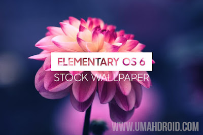Elementary OS 6 Default Wallpaper