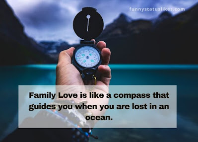 Family Love is like a compass that guides you when you are lost in an ocean.