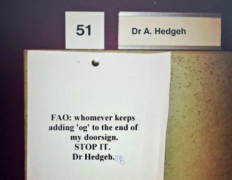 Dr A Hedgeh does not want to be Dr Hedgehog Citation Needed. marchmatron.com