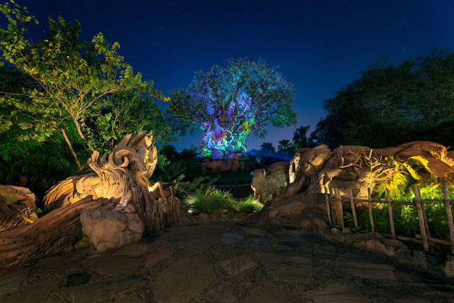 Animal Kingdom na Disney a Noite