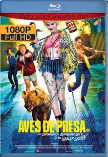 Aves De Presa (2020) [1080p BRrip] [Latino-Inglés] [GoogleDrive]