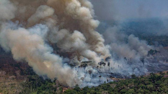 """Amazonie: le Brésil rejette l'aide du G7, lutte contre les incendies jugés """"sous contrôle"""""""