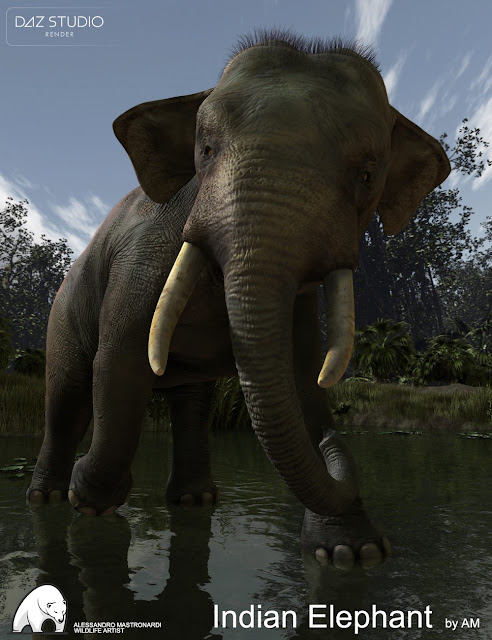 Indian Elephant by AM