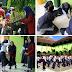 """""""Sehari Belajar di Luar Kelas"""" Digelar MTsN 10 Magetan Untuk Peringati Hari Anak Sedunia"""