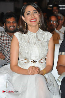 turodu Telugu Movie Audio Launch Stills  0005.jpg