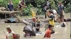 Rupinus Hadir Nangguk Ikan Bersama di Danau Sekameh