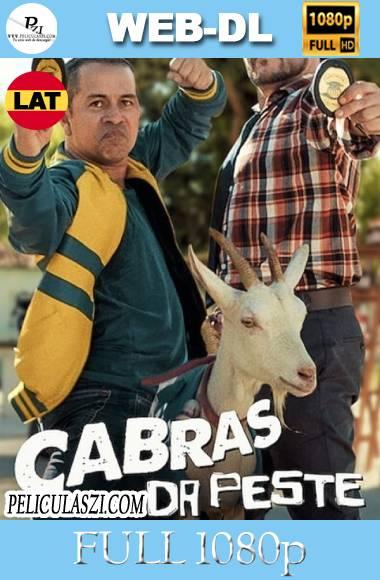 Más Locos que una Cabra (2021) Full HD NF WEB-DL 1080p Dual-Latino