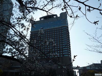 桜と帝国ホテル