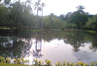 Wisata Murah Meriah di Taman Dadap Merah