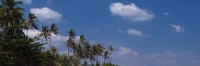 di Lombok Nusa Tenggara Barat  12  di Lombok Nusa Tenggara Barat