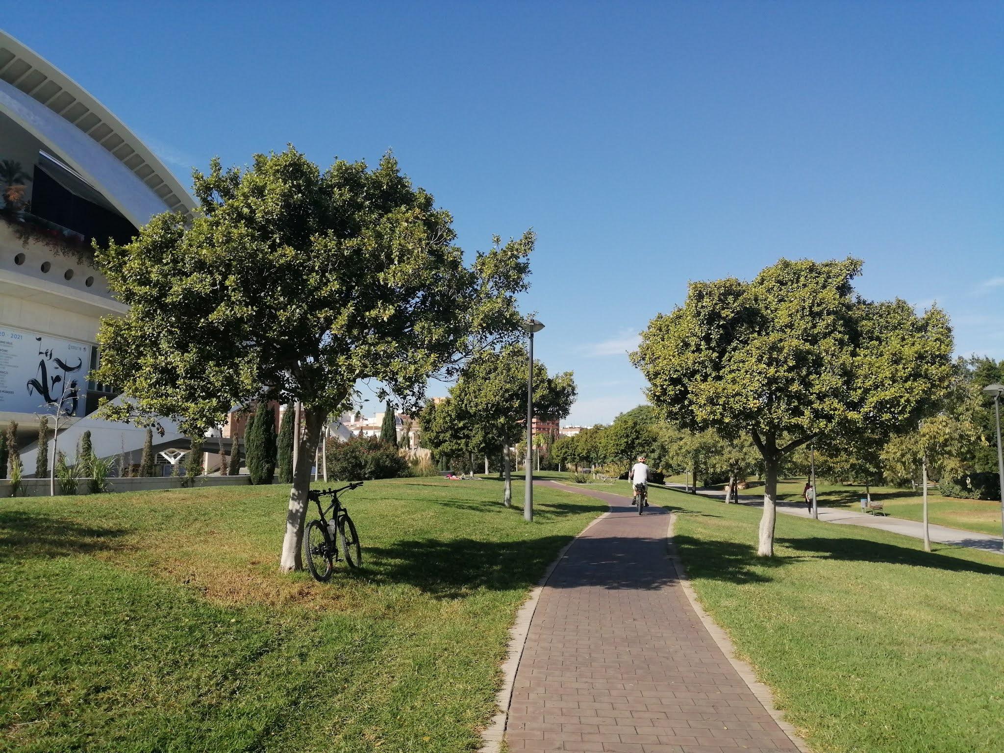 Bike path in the Turia Gardens, Valencia