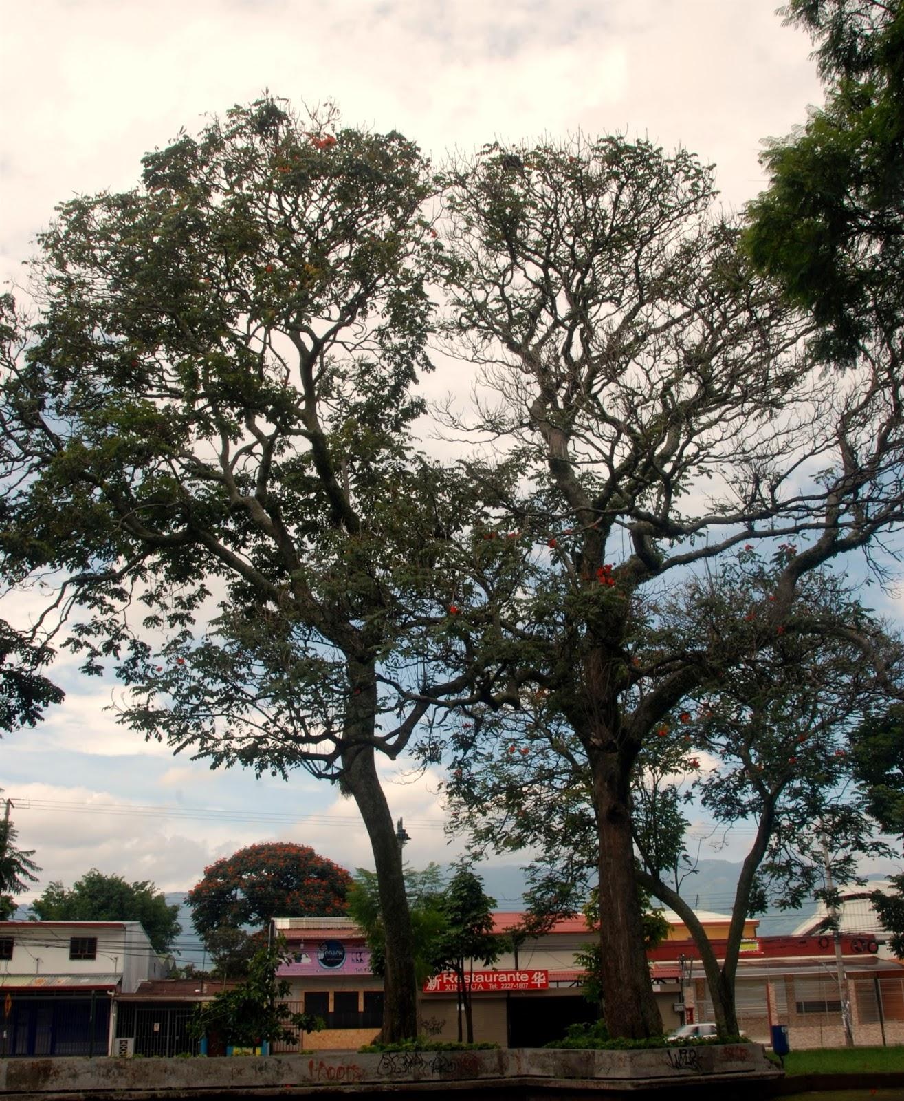 Viajes cuentos e historietas parque rep blica dominicana - Oklahoma vecindario ...