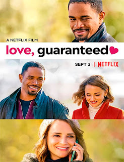 Love, Guaranteed (Amor garantizado) (2020) | DVDRip Latino HD GoogleDrive 1 Link