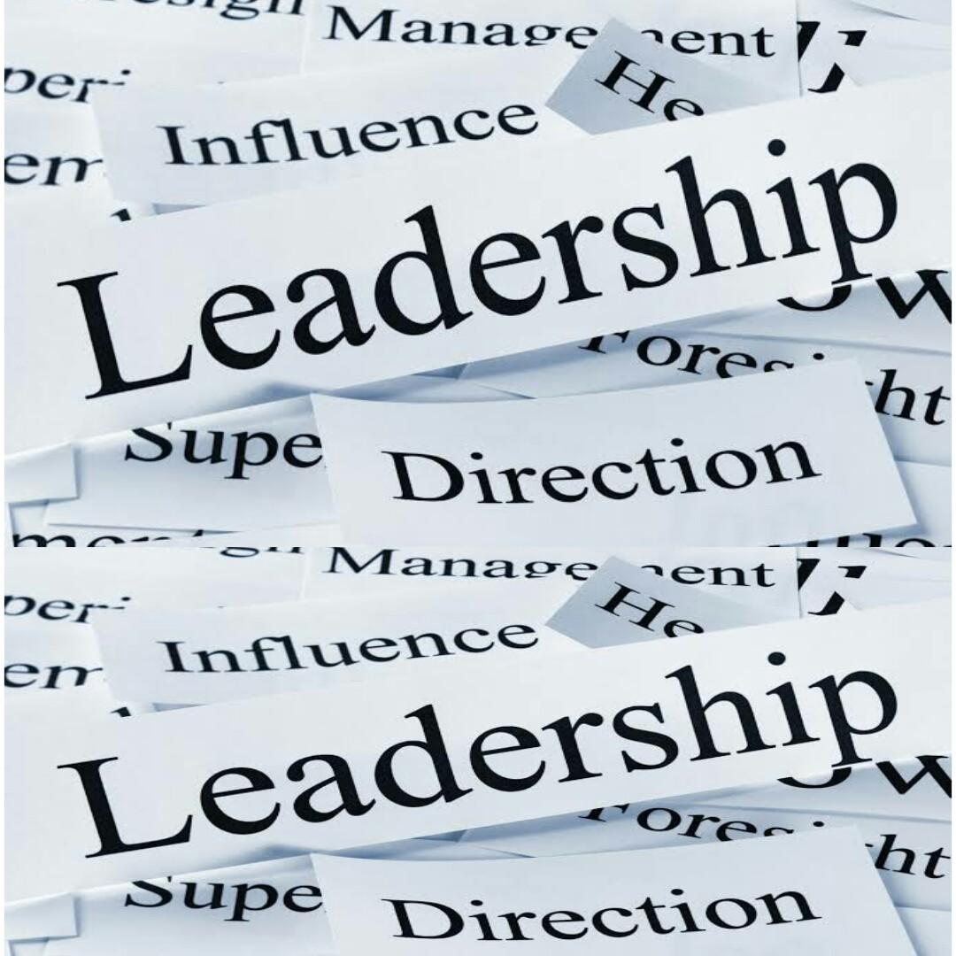 Impact of effective leadership styles on organizational growth(a case of Kebbi home savings and loans ltd B/Kebbi)