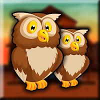 Little Owl Escape Walkthr…