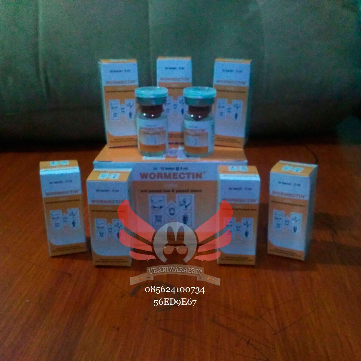 Obat Scabies Injeksi - Wormectin 2ml