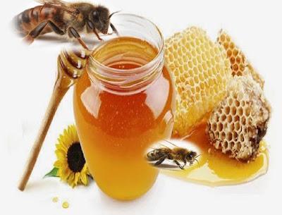 عسل النحل,النحل,عسل,تربية النحل,تربية النحل للمبتدئين,الطب البديل,نحل,العسل,فوائد النحل,عسل النحل للبشرة,عسل النحل للرضع,النحل في المغرب,عسل النحل للشعر,النحل الأوربي,عسل النحل للحامل,نحال مغربي,علاج,فوائد العسل