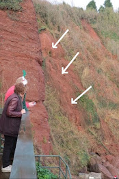 ARCHIVE: DANGEROUS STATE OF CLIFF FACE