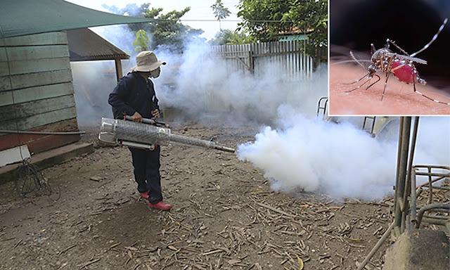 Fumigarán cerca de 24 mil viviendas para combatir dengue en Madre de Dios