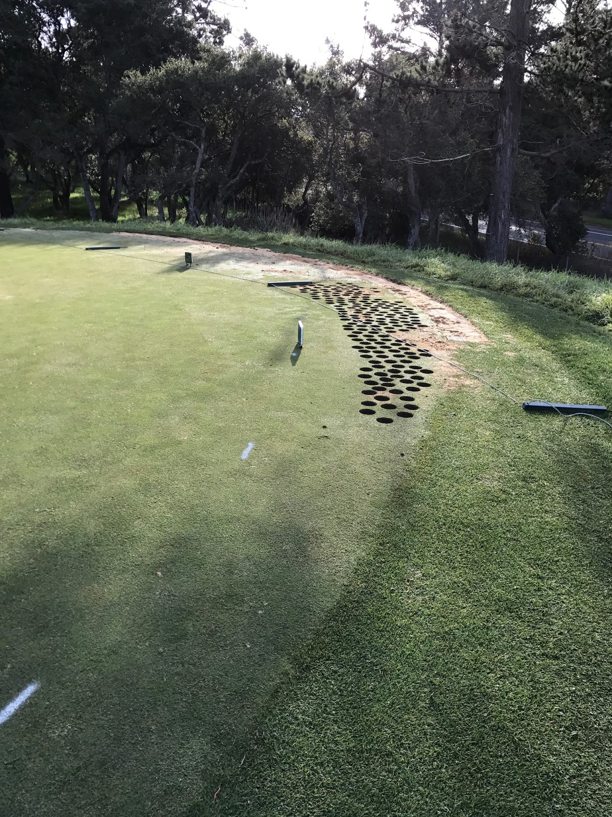 this past week some of our talented team led by our assistant superintendent blake tackled a sod job behind 7 green that we have had on our radar for quite