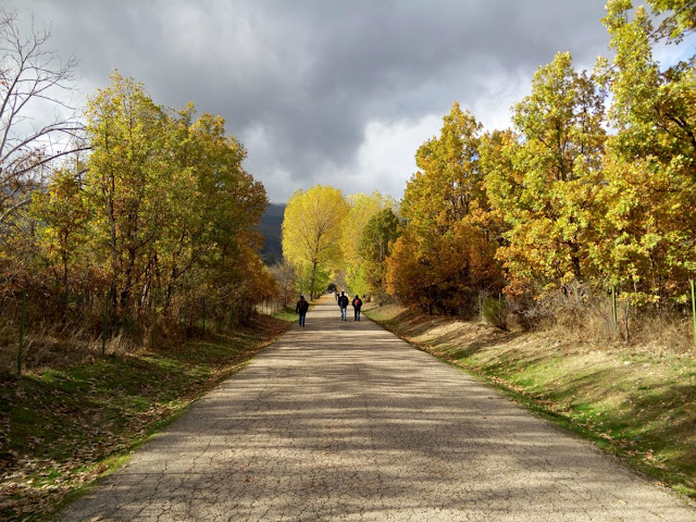 Paseo-hacia-monasterio-de-el-Paular